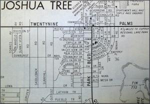 Joshua Tree CA