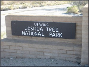 Leaving Joshua Tree