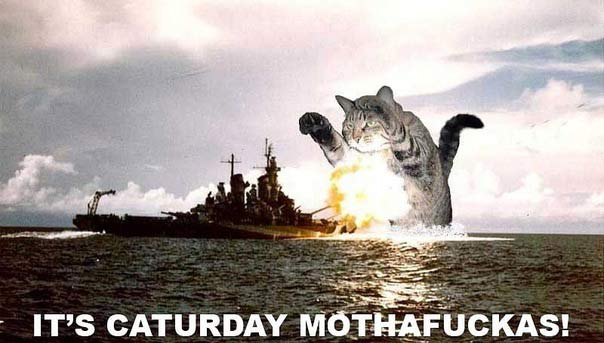 It's-Caturday-Mothafuckas!